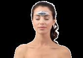 Sichere und effiziente Methode zur Akutbehandlung und Prävention von Migräne durch Neuromodulation (nicht-invasiver elektrischer Stimulator)